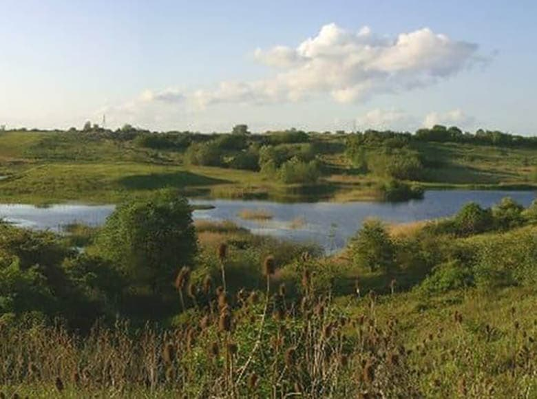 Kings Dyke Nature Reserve